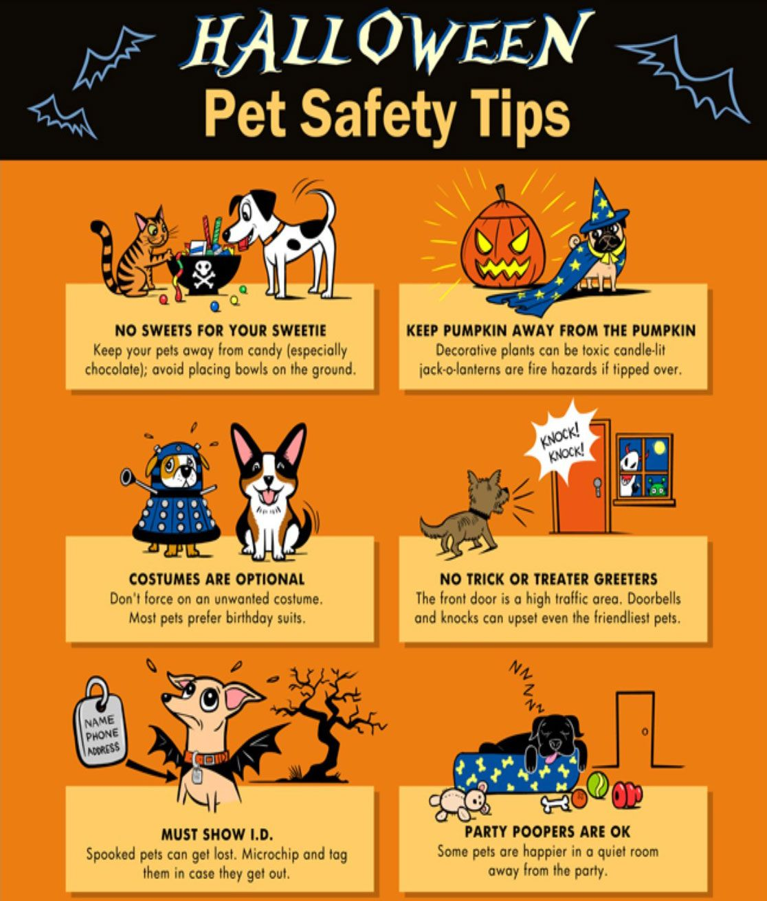 Halloween Pet Tips